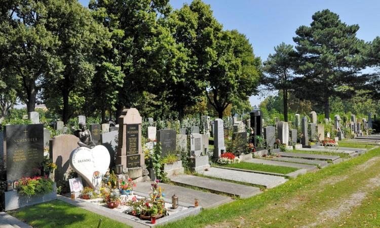 Beč: Posjeta groblju od kuće