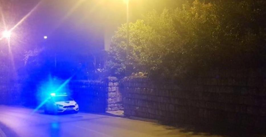 Strava kod Dubrovnika: Upucao svoje roditelje, bore se za život