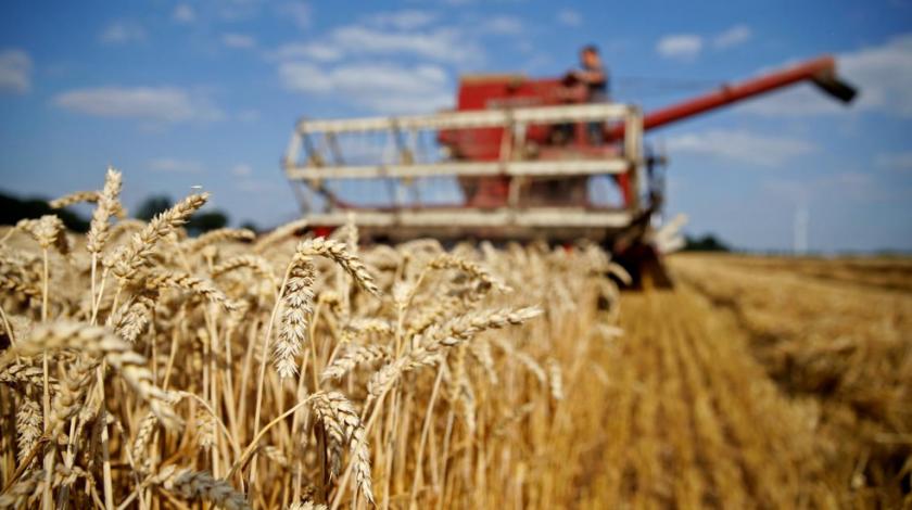 Cijene hrane na svjetskim tržištima ponovno porasle