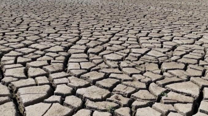 Jednostavno nestvaran prizor: Presušilo Buško blato
