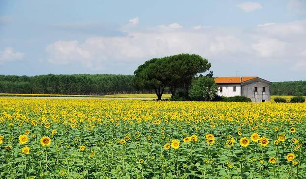 Mjesto u Italiji plaća 45 tisuća eura da dođete živjeti kod njih