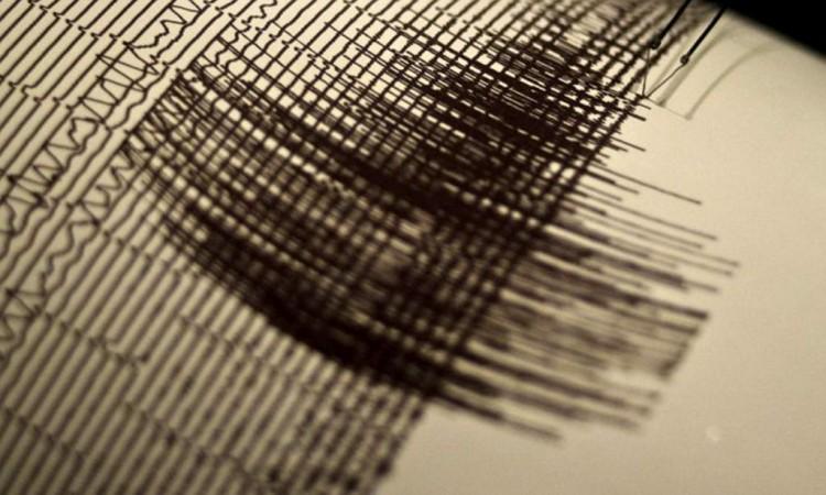 Novi potres
