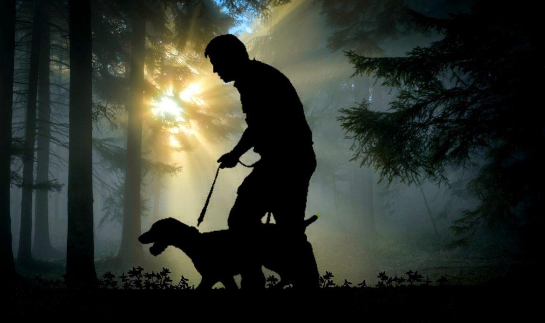 Šumari u Tomislavgradu najavljuju hvatanje i kažnjavanje krivolovaca