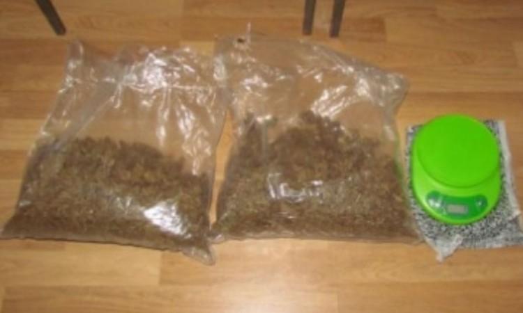 U Čapljini pronađeno i iščupano 37 stabljika marihuane